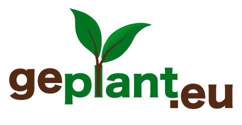 geplant